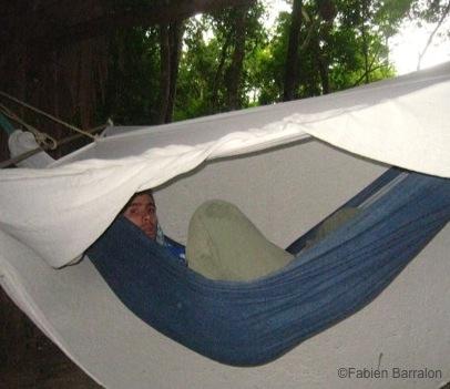 Dormir-Jungle