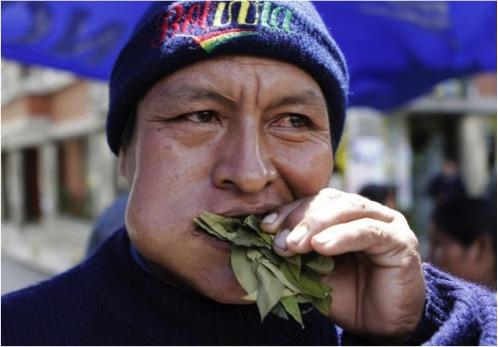 Bolivien-feuille-de-coca