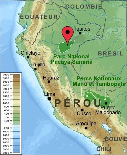 Carte-Perou-Excursion-Pacaya-Samiria