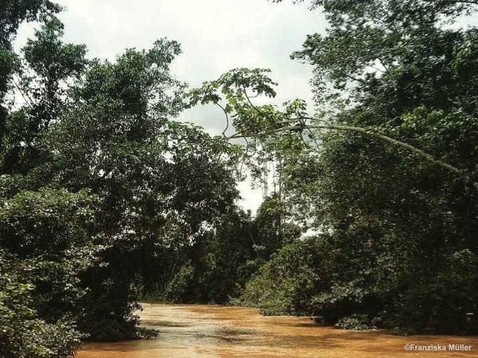 Fleuve-TrekEquateur