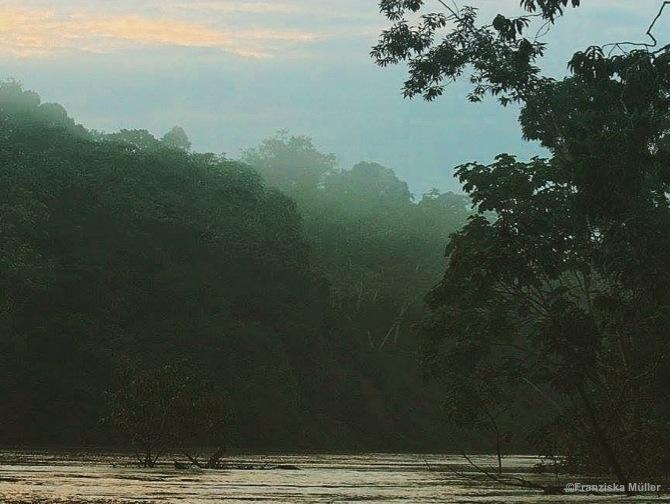 Fleuve-Yasuni-TrekEquateur