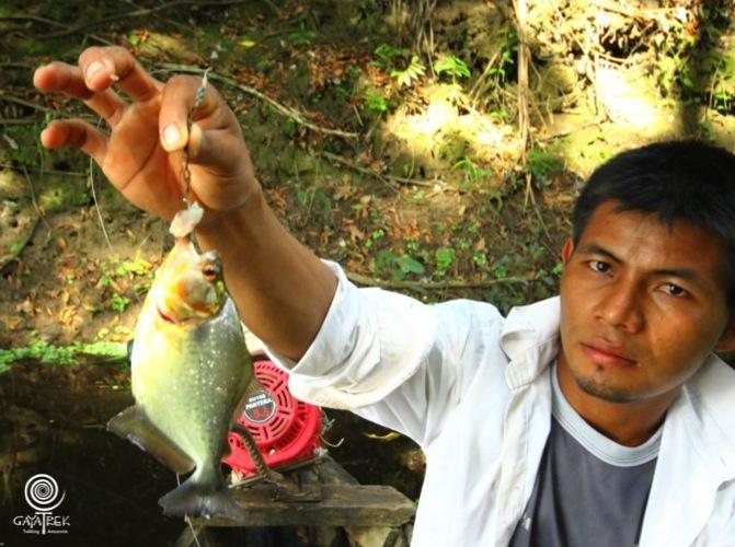 Guide-Piranha-Peche