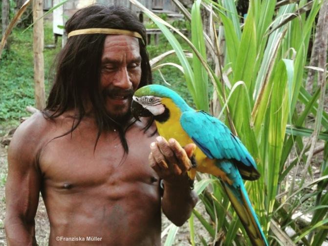 Huaorani-Perroquet-Equateur