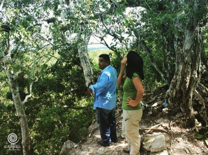 Trek-Tikal-Pyramide-Diablo