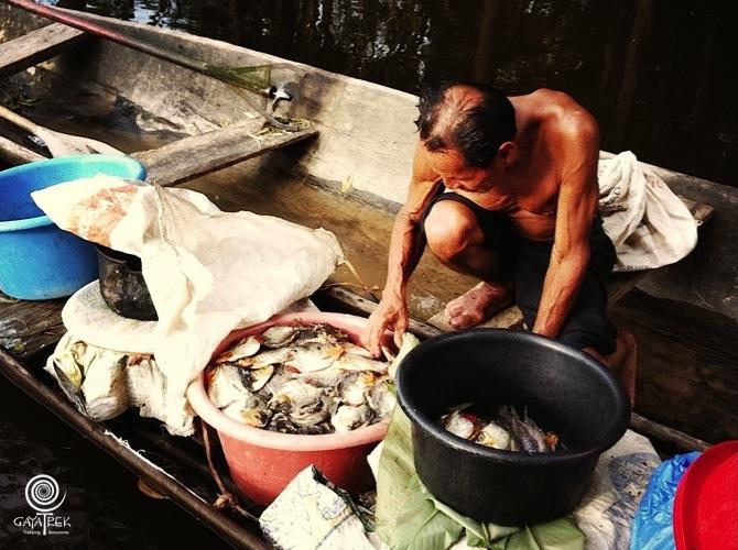 Vendeur-Piranha