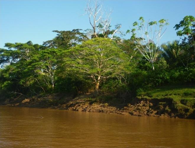 CircuitPerou-Bord-Rio-Amazonie
