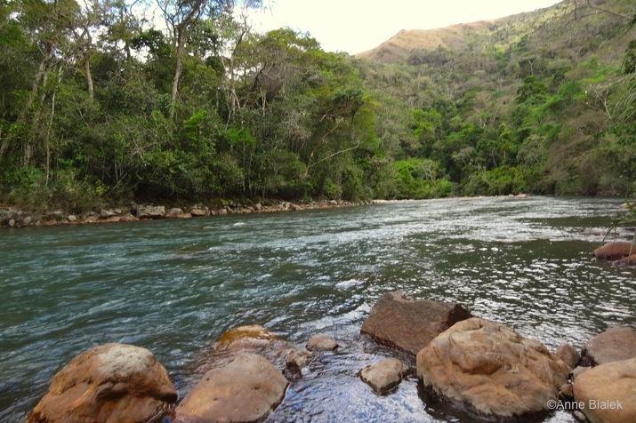Riviere-Jungle-Bolivie