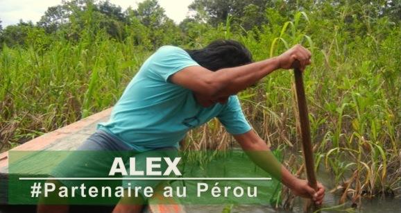 Partenaire-Alex