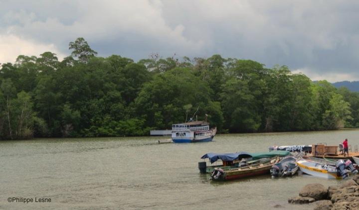 Panama-Puerto-Kimba
