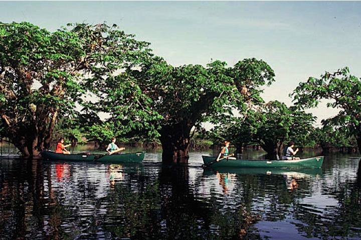 Gayatrek-Amazonie-Canoe
