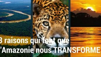 Amazonie-Transforme