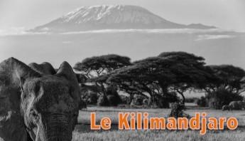 kilimandjaro-montagne
